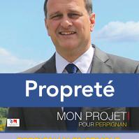 Découvrir : http://enavantperpignan.com/2014/03/10/perpignan-ensemble-proprete/